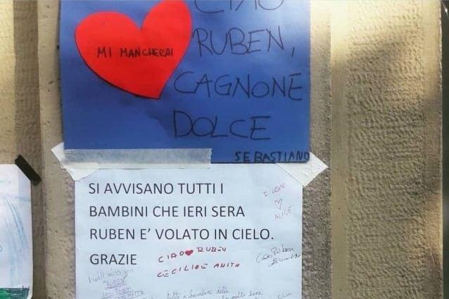 Milano, i disegni dei bambini e un video dei pompieri per dire addio al cane Ruben