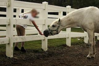 Paderno Dugnano, bambina di sei anni cade da cavallo e batte la testa: trasportata in ospedale, è grave