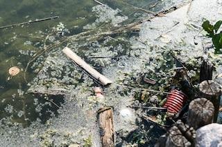 Il lago di Varese inquinato e non balneabile: un'austriaca lancia un'iniziativa per tutelarlo