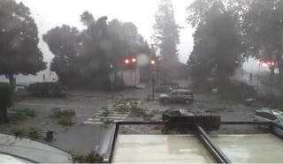 Maltempo, tempesta di vento e pioggia nel Varesotto: alberi caduti, tetti divelti e auto distrutte