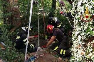 Pavia, cane precipita in un pozzo profondo 15 metri: vigile del fuoco si cala e lo salva