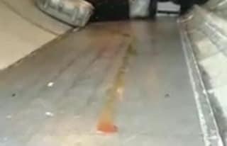 Aeroporto Milano Malpensa, scorre un liquido rosso in stiva: valigie sporche di sangue