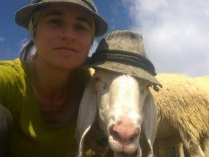 Una delle foto del concorso 'un selfie con la pecora'