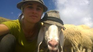 Sulle Alpi Orobie il 'concorso dell'estate': il selfie con la pecora
