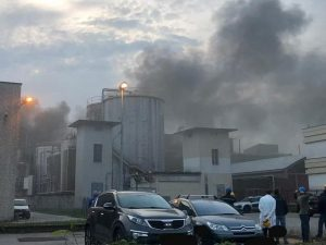 Incendio a Filago (Foto Facebook A.Capelli)