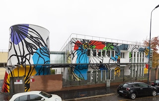 Milano, maxi murale al centro per disabili di via Anfossi: un campo di fiori adorna la facciata