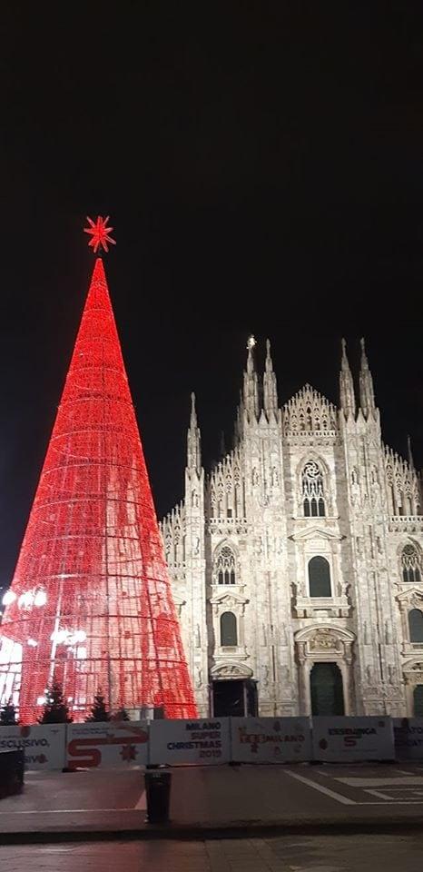 L'albero di Natale (Foto: Annalisa Cretella)