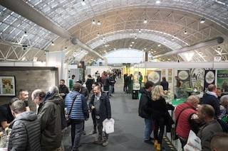 A Milano il Canapa Expo 2019: eventi, novità e migliaia di prodotti in mostra