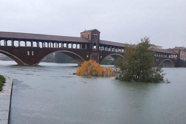 Il Ticino in piena a Pavia (foto Facebook – Marco Bassani)
