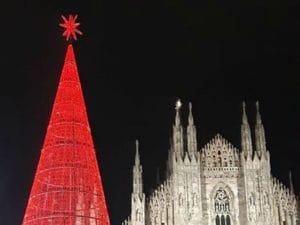 (L'albero di Natale 2019 illuminato, foto di Annalisa Cretella)