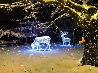 Natale 2019: le famose luci di Leggiuno restano spente, ma si illumina Cunardo