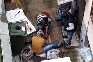 Milano, il cortile di un condominio usato come macelleria: carne tagliata a terra tra l'immondizia