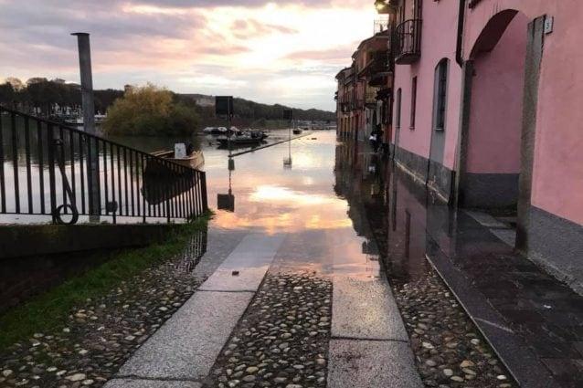 Il Ticino esondato al Borgo basso di Pavia (Foto: assessore Pietro Trivi)