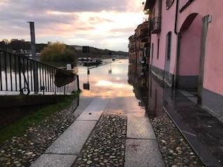 Maltempo, il Ticino esonda a Pavia: l'acqua raggiunge il livello delle case