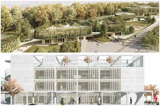 Milano, scuola-parco, giardini sui tetti e terrazze: i progetti per i plessi Scialoia e Pizzigoni