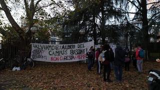 Milano, protesta ambientalista contro l'abbattimento degli alberi del parco di via Bassini