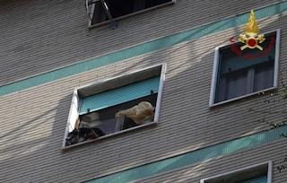 Corsico, cagnolino in bilico sul davanzale a 20 metri d'altezza: salvato dai vigili del fuoco