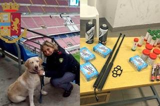 Milano, scontri tra ultrà e polizia prima del derby: blitz con cane poliziotto in curva sud