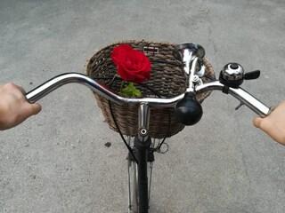 Più biciclette a Milano, se non ora quando? Per cambiare davvero serve coraggio