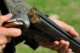 """La Lombardia dichiara """"guerra totale"""" ai cinghiali: caccia tutto l'anno, anche di notte coi visori"""