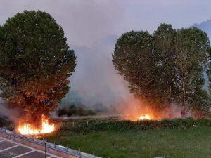 Incendi dolosi al Parco del Ticinello a Milano, appena riaperto: alberi in fiamme