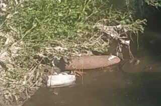 """Milano, """"c'è un ordigno della Seconda guerra mondiale nel fiume"""": ma è vecchia bombola del gas"""