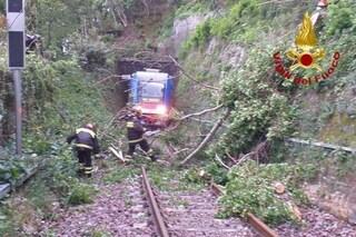 Alberi abbattuti dal vento sulla ferrovia: disagi e ritardi sulla linea Domodossola-Milano