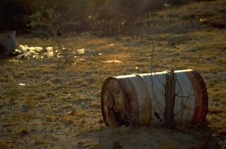 Rifiuti tossici interrati nel Parco Nazionale del Cilento, a pochi passi dai campi coltivati