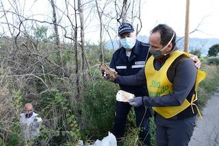 Volontari ambientalisti trovano 25mila euro mentre puliscono le strade dai rifiuti