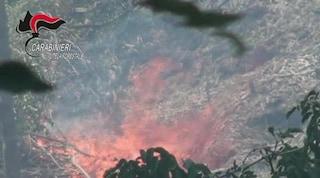 Caserta, dà fuoco a 20mila metri quadri di bosco in un'area protetta: arrestato