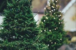 La zona rossa non ferma il Natale, alberi e decorazioni venduti illegalmente: chiusi due negozi