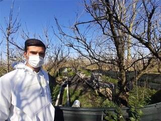 Una raccolta fondi per Michele dopo l'incendio doloso che ha ucciso 700mila api del suo allevamento