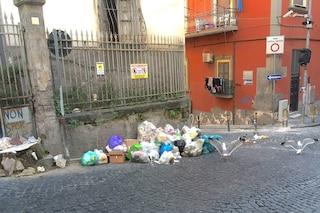 Ai Quartieri Spagnoli la raccolta rifiuti porta a porta fa flop: i cumuli abusivi invasi da gabbiani