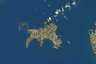 Isola di Procida sembra un gatto vista dall'alto: lo scatto dell'astronauta è virale