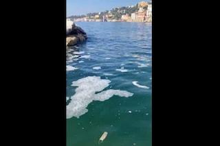 """Schiuma, melma e liquami nel mare a Posillipo, i comitati: """"Sono gli scarichi illegali"""""""