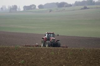 """De Luca manderà i giovani a zappare: """"Piano per la gestione dei terreni agricoli della Regione"""""""