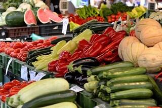 Frutta e verdura venduta abusivamente in strada: sequestrata e regalata allo Zoo di Napoli