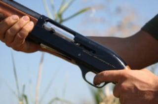 Sente l'allarme in casa, spara col fucile e colpisce le finestre dei vicini: denunciato