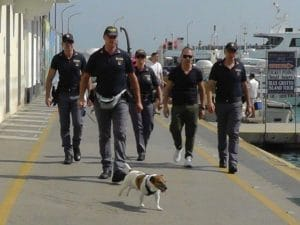 Pocho, il cane poliziotto della questura di Napoli