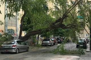 Allerta meteo in Campania a Pasquetta per il forte vento: a Napoli parchi chiusi