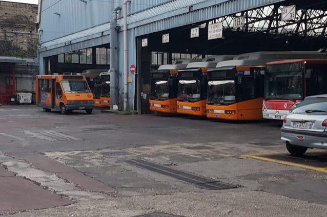 Gli autobus dell'Azienda Napoletana Mobilità