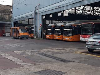 Mattinata nera per i trasporti a Napoli: fermi per un guasto i filobus dell'Anm