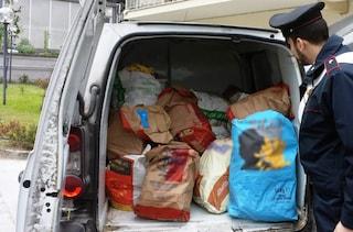 Napoli, sequestrati 200 chili di pane in pessime condizioni igienico-sanitarie
