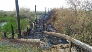 Incendio nell'Oasi dei Variconi, a fuoco le strutture in legno della Riserva Naturale