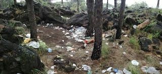 Rifiuti e plastica nella pineta di Ercolano: è il triste bilancio di Pasquetta 2019