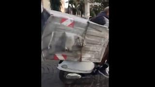 Napoli, ruba cassonetto dell'immondizia e lo carica sullo scooter: il video