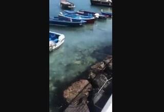 Napoli, il mare della Riva Fiorita di Posillipo diventa bianco