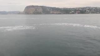 """""""Da Posillipo a Procida, strane macchie nel mare di Napoli"""": la denuncia"""