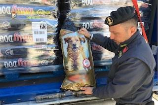"""Scoperte al porto di Salerno 22 tonnellate di cibo per cani falso """"made in Italy"""""""
