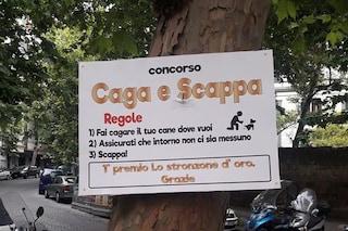 San Martino 'invaso' dalla cacca di cane: il cartello di protesta dei residenti